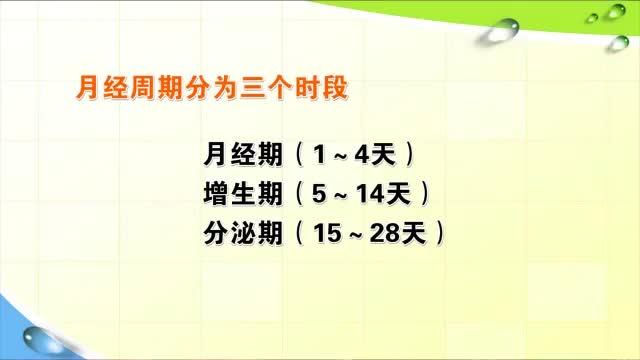 1-4男女两性的生物学性征3.mp4