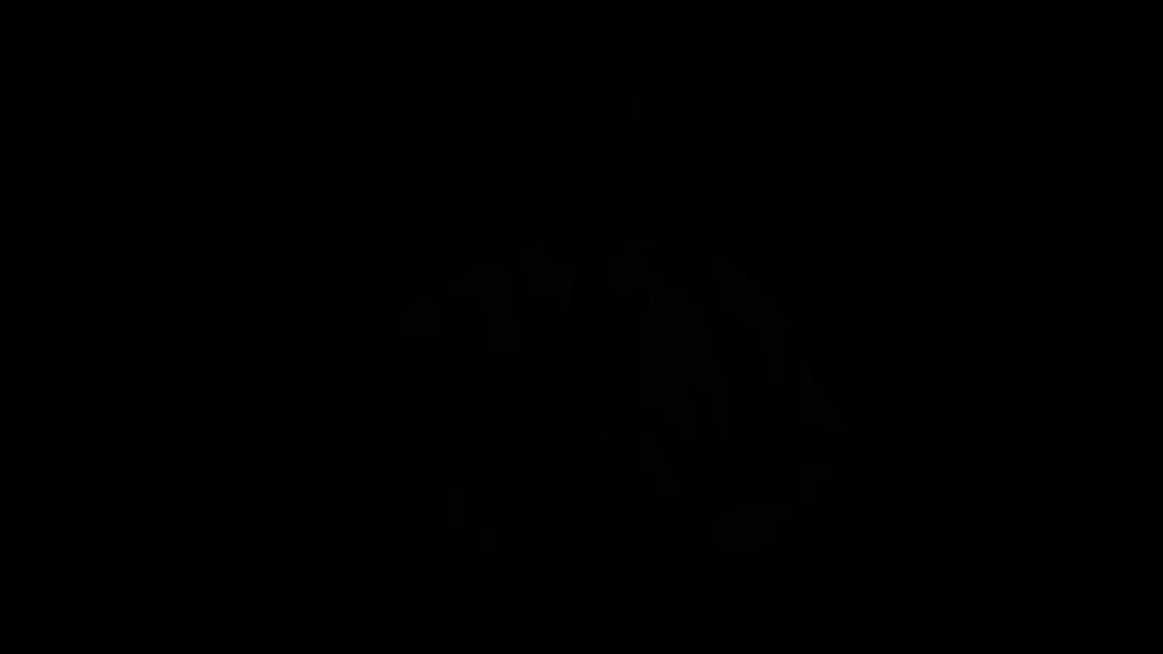1.3.3-丁宁-《米罗岛的维纳斯》.mp4