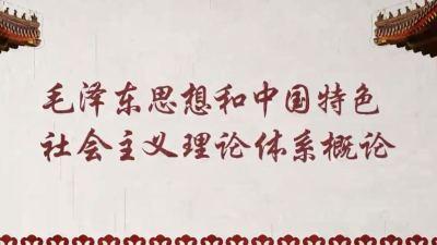 毛泽东思想和中国特色社会主义理论体系概论(复旦大学)