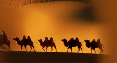 智慧树丝绸之路文明启示录答案