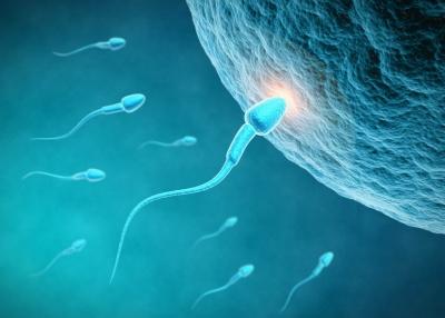 组织学与胚胎学(吉林医药学院)答案2020
