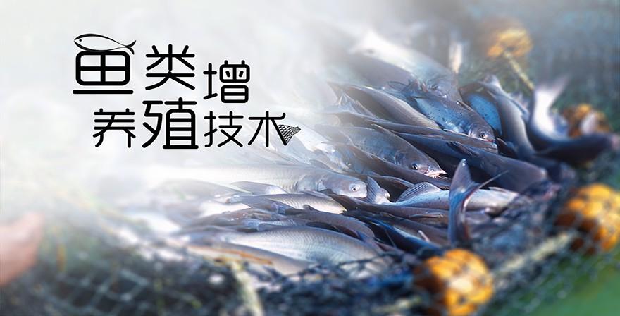 鱼类增养殖技术_智慧树知到答案2021年