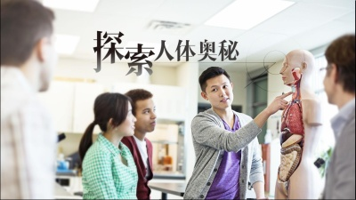 人体解剖学(江西中医药大学)