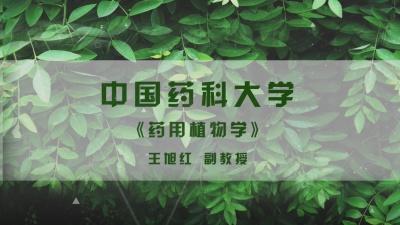 药用植物学(中国药科大学)