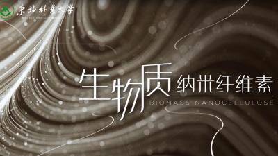 生物质纳米纤维素(黑龙江联盟)安全答案