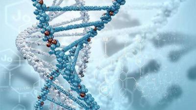 生物化学与分子生物学智慧树答案