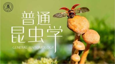 普通昆虫学(山西农业大学)智慧树期末答案