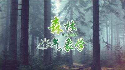 森林气象学
