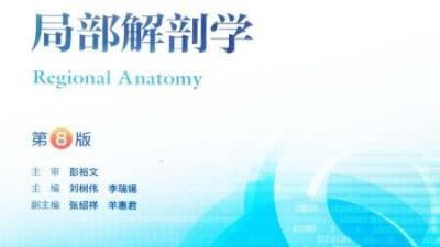 局部解剖学(山东联盟-滨州医学院)