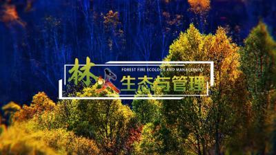 林火生态与管理