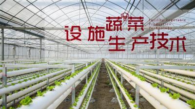 设施蔬菜生产技术