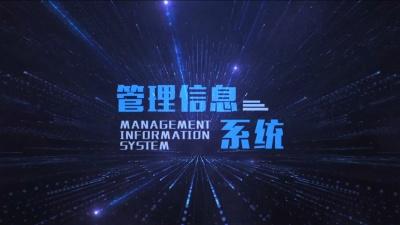 管理信息系统(山东财经大学)