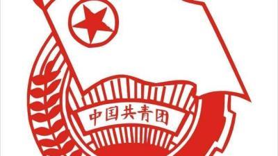 共青团组织管理(山东联盟)