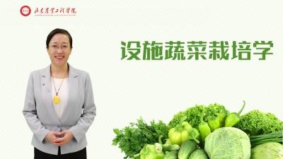 设施蔬菜栽培学(山东联盟)