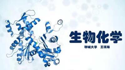 生物化学(山东联盟-聊城大学)