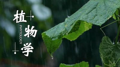 植物学(中国农业大学)