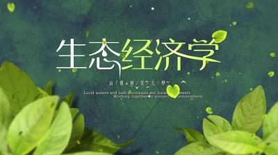 生态经济学(山东财经大学)