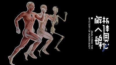 解析人体的奥秘