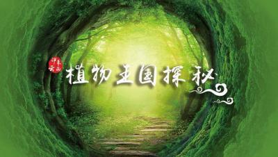 印象云南——植物王国探秘智慧树见面课答案