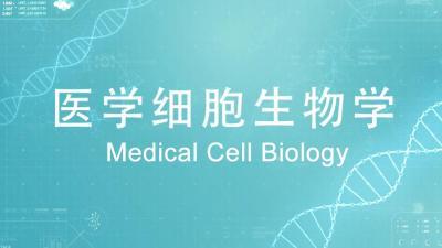 医学细胞生物学(山东联盟)