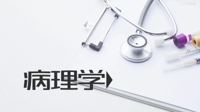 病理学(潍坊医学院)期末智慧树答案