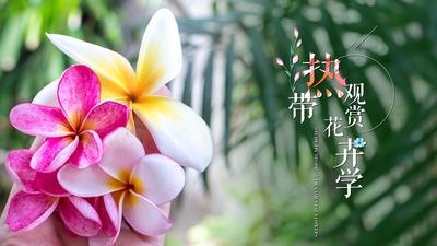 热带观赏花卉学(海南联盟)章节测试答案