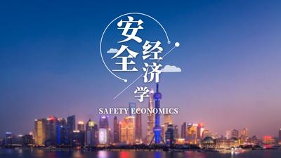 安全经济学