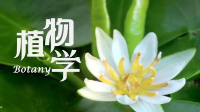 植物学(东北林业大学)