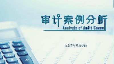 审计案例分析(山东联盟)
