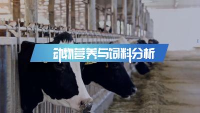 动物营养与饲料分析