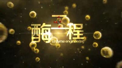 酶工程(山东联盟)