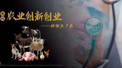 现代农业创新创业——动物生产类