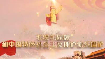 毛泽东思想和中国特色社会主义理论体系概论(山东联盟-滨州学院)