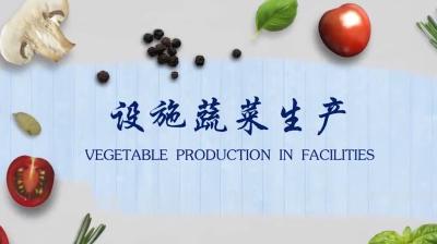 设施蔬菜生产答案期末答案
