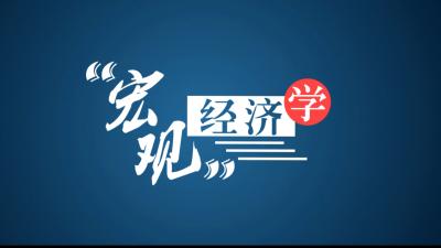 宏观经济学(西北政法大学)
