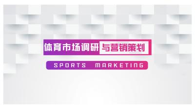 体育市场调研与营销策划