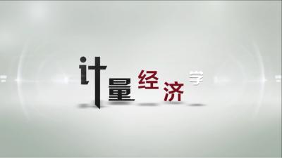 计量经济学(西北政法大学)