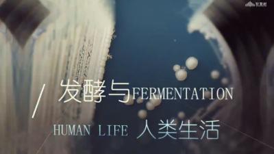 发酵与人类生活