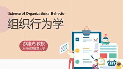 组织行为学(对外经济贸易大学)
