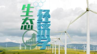 生态经济学(南昌大学)