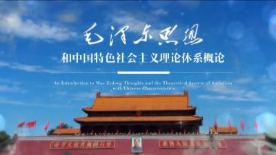 毛泽东思想和中国特色社会主义理论体系概论(温州大学)