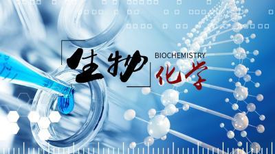 2020生物化学(中山大学)答案