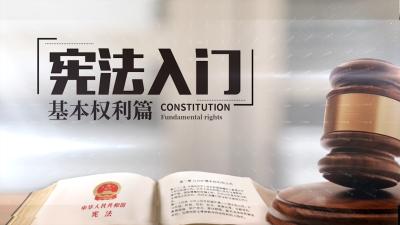 宪法入门-基本权利篇答案2020