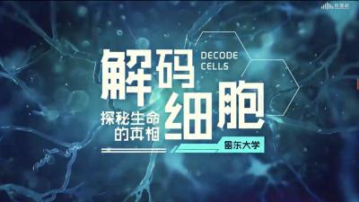 解码细胞——探秘生命的真相