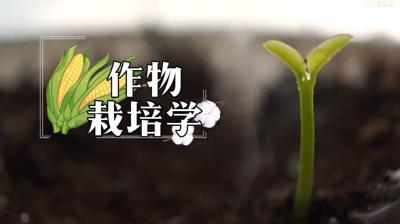 作物栽培学考试答案